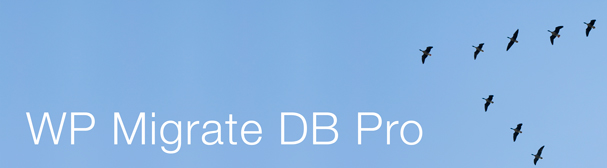 Say hello to WP Migrate DB Pro